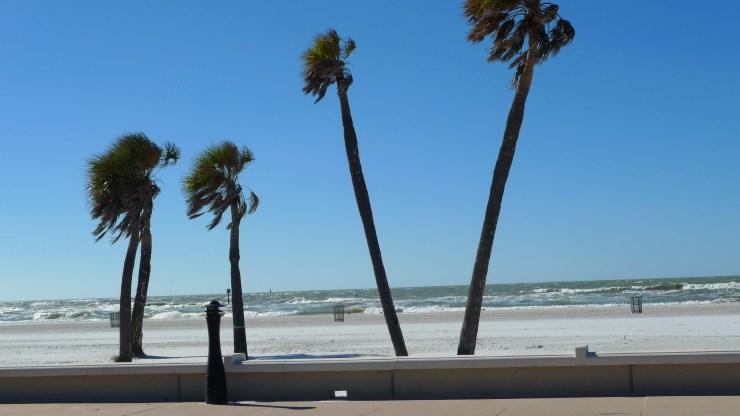 P1110367 Clearwater Beach, St Petersburg, Florida