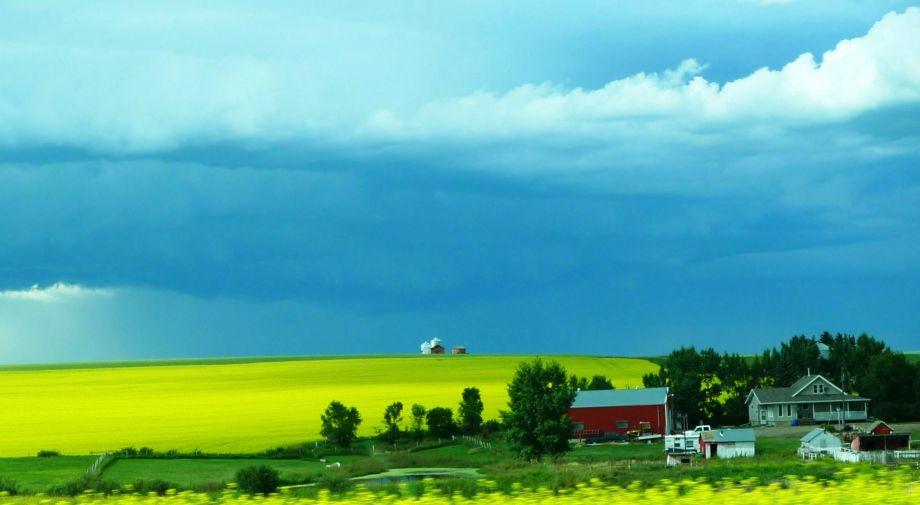 Prairie Field And Farm Yard