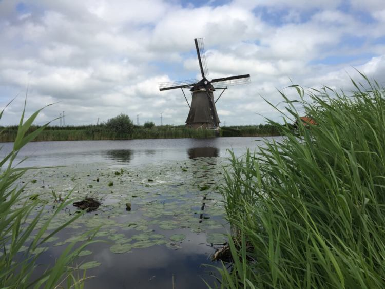 Kinderdijk travellovers