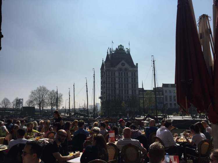 Oude haven Rotterdam terras