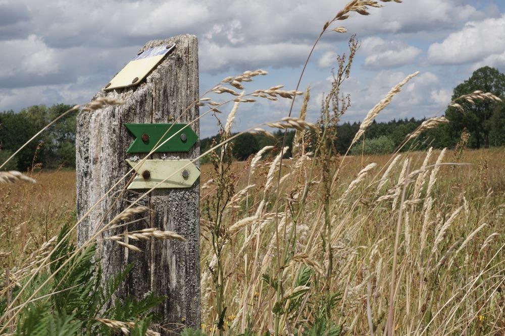 Wandelen Huis ter Heide Noord-Brabant