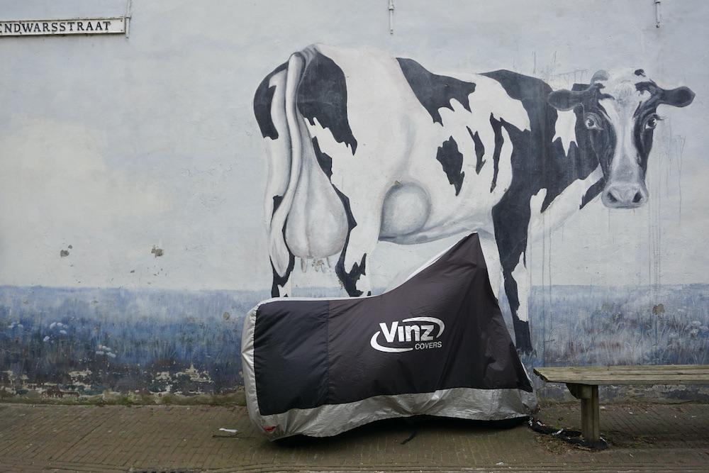 Street art Dirklangedwarsstraat Delft