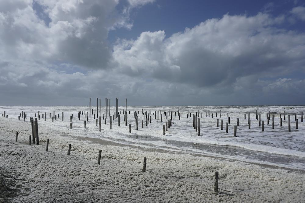 Palendorp strand van Petten