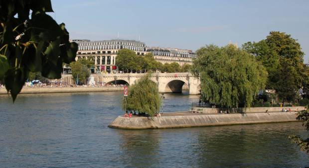 View of Île de la Cité and Pont Neuf from the West, Downstream