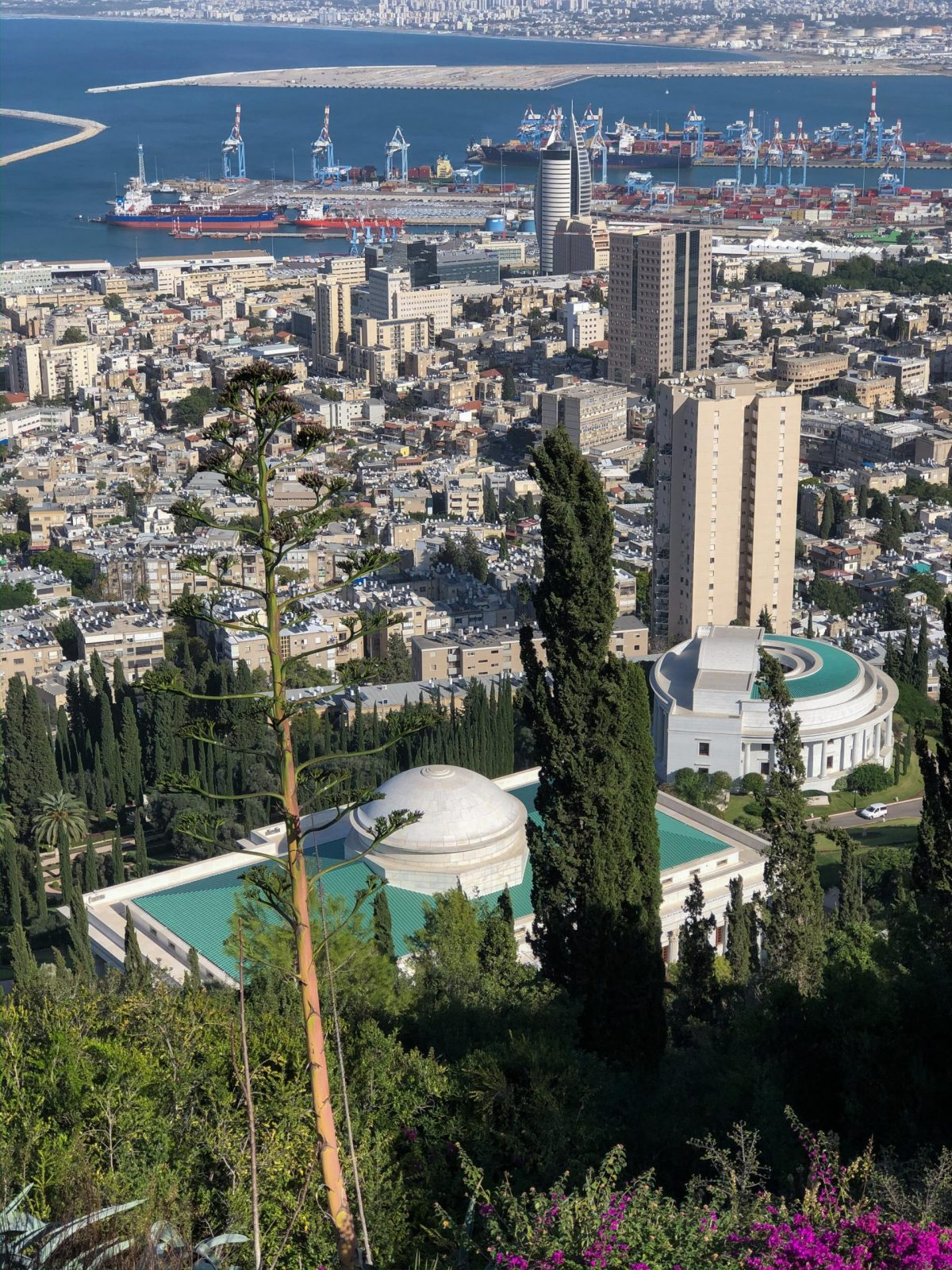 The passengers of Viking Sky on excursion to Bahai Gardens in Haifa