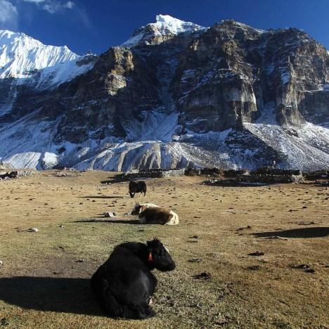 Tsum Valley Offers Glimpse Into Tibetan Culture