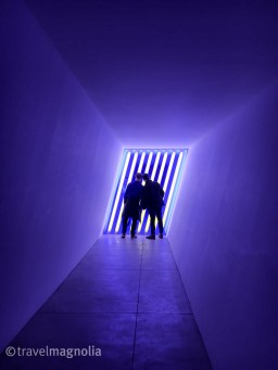 Dan and Steve with Purple Flavin 2