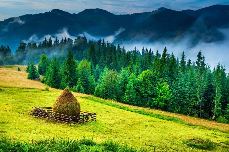 Bucovina & Transylvania Tour