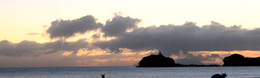 Lugares mágicos de Australia: Cape Hillsborough
