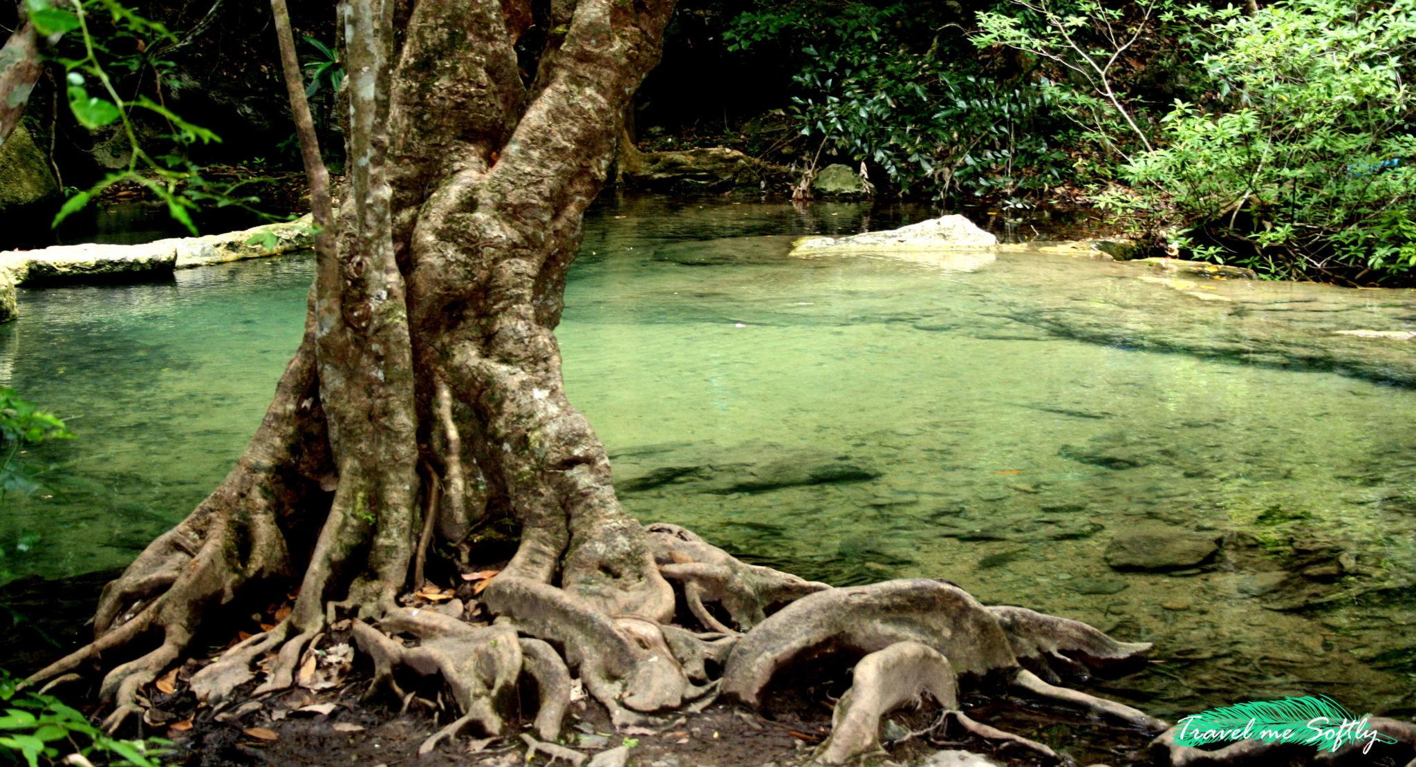 Paisaje de Erawan Falls