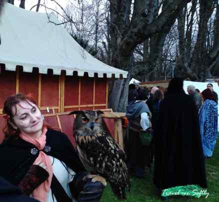 qué hacer en mannheim feria medieval