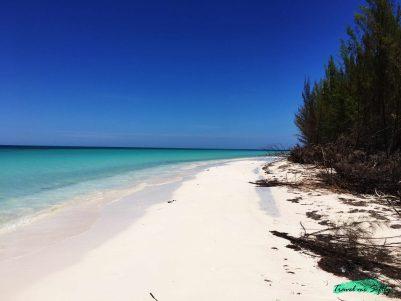 paraíso cubano cayo jutías