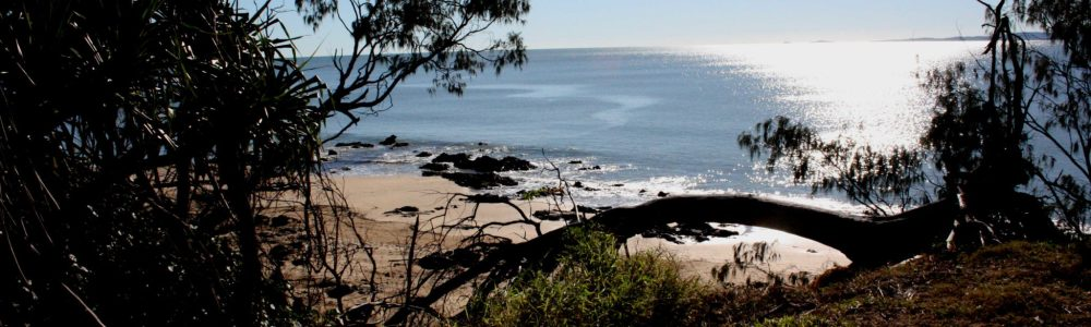 Campings de Australia II: de Cape Hillsborough a Yeppoon
