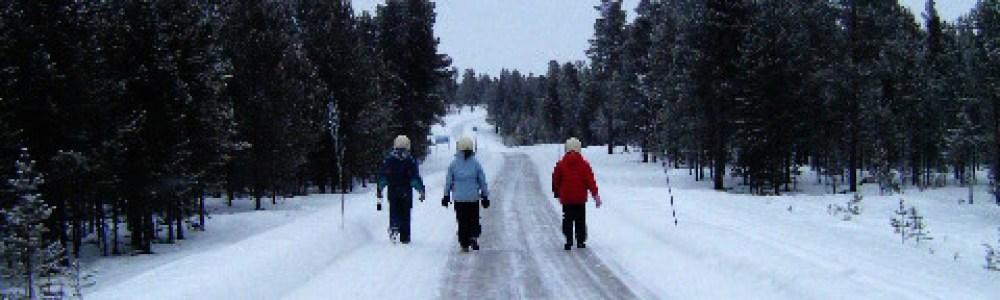 De cuando nos quedamos tiradas en medio de la nada nevada y nuestro viaje a Laponia cambió por completo
