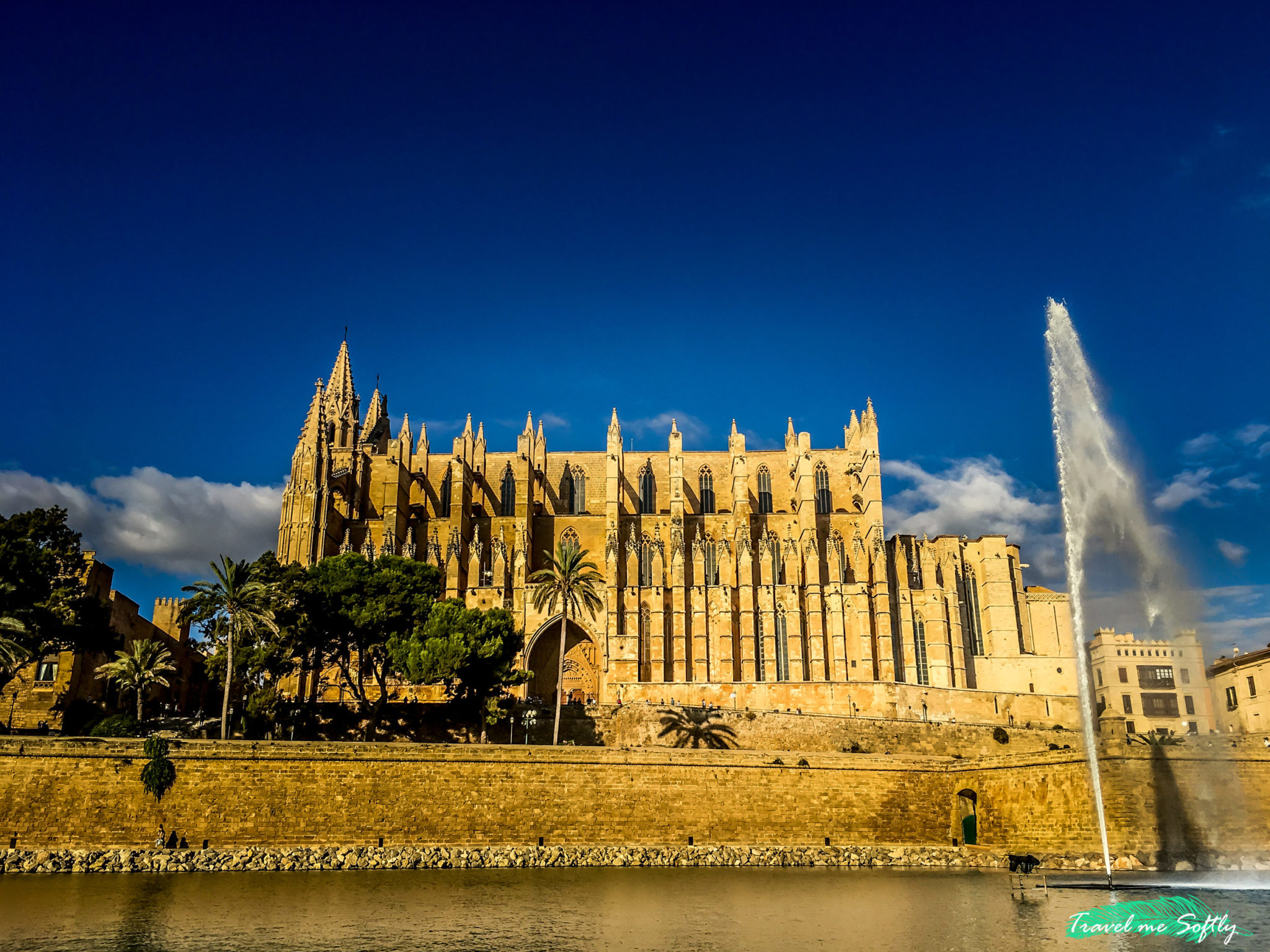 catedral de Mallorca en invierno
