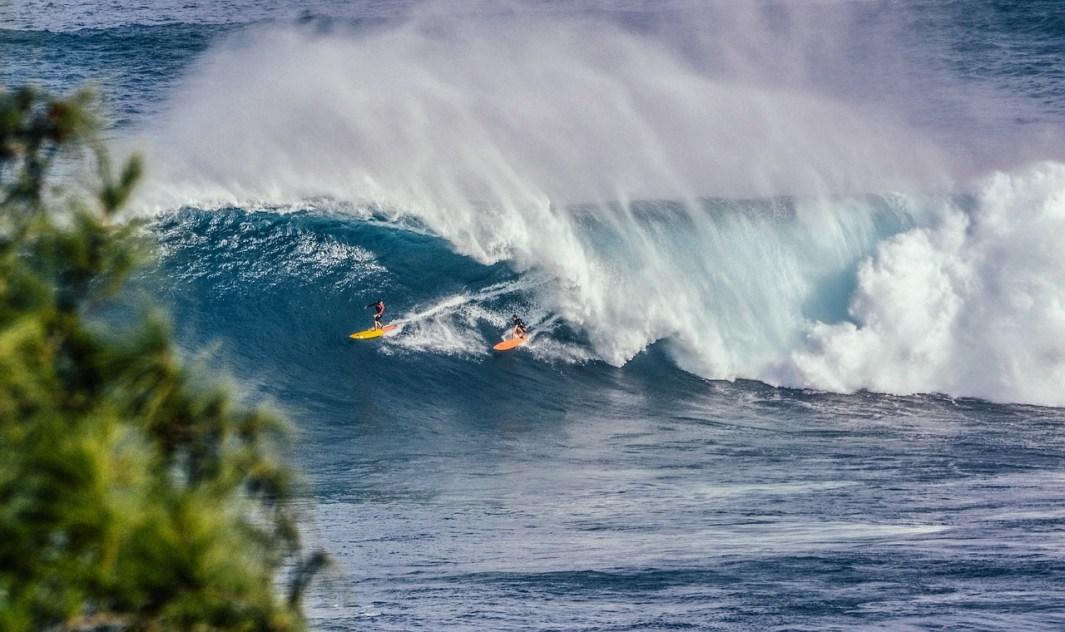 viajar y surfear