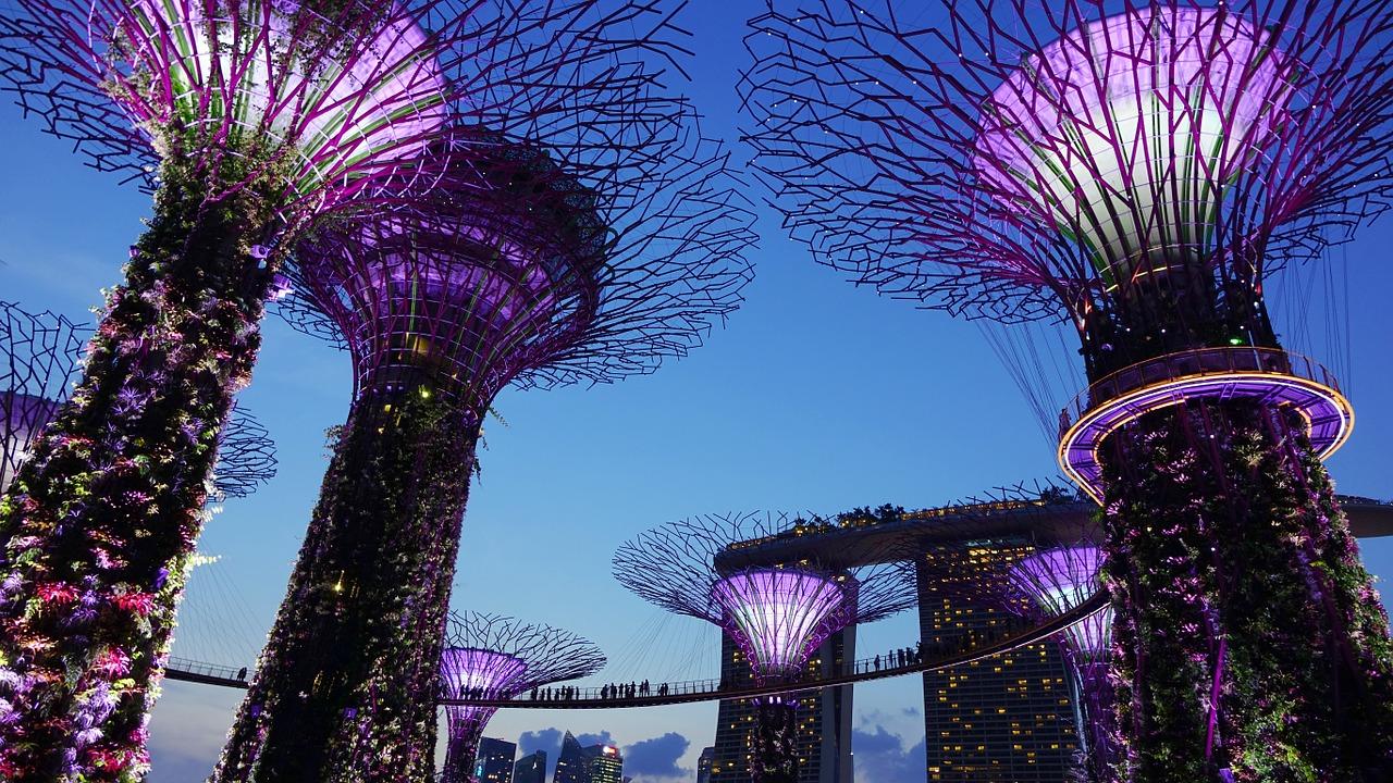 multas en Singapur gardens by the bay