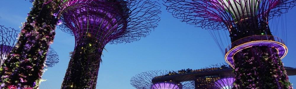 Las 7 cosas más locas por las que te pueden multar en Singapur