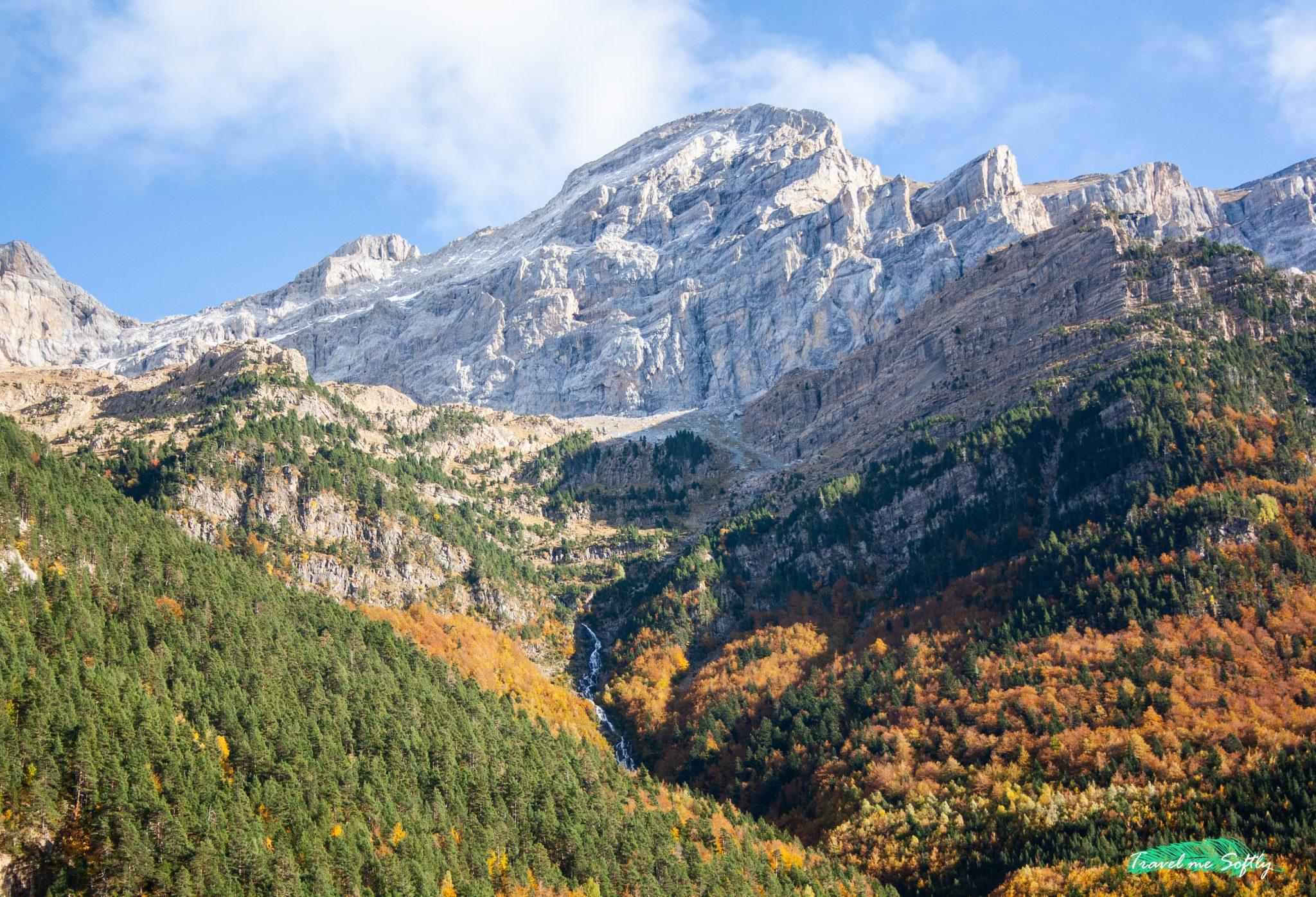 bosques de españa para disfrutar del otoño