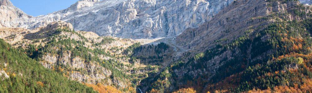 12 Bosques de España para disfrutar del otoño y sus colores