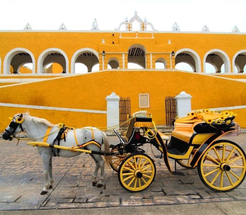 yellow walls in old city and yellow horse and carriage buggy