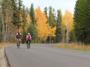 Montana Biking