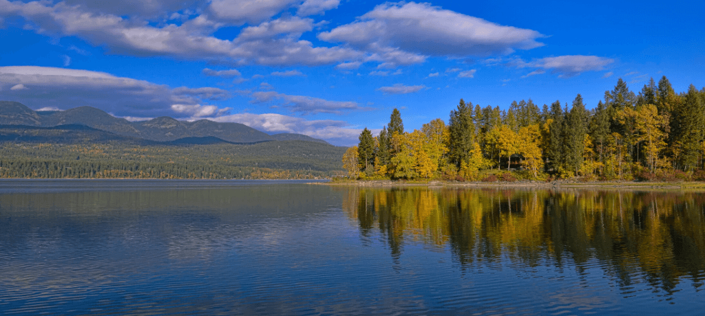 Whitefish Lake framed by pine trees and a blue sky in Whitefish, Montana