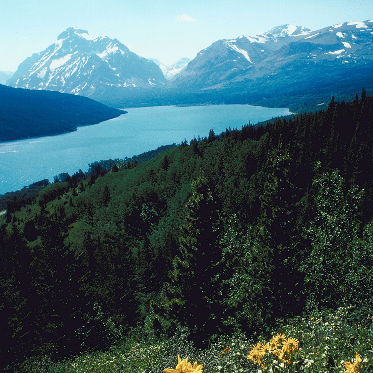 Two Medicine Lake in Glacier National Park