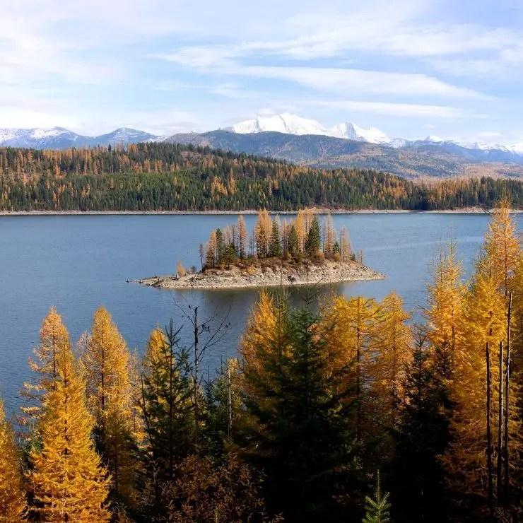 Beautiful Montana Fall Foliage at Hungry Horse Reservoir