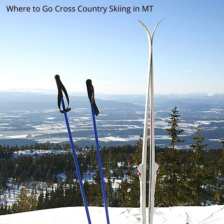 A pair of cross country skis and poles by one of the best places to go cross country skiing in Montana.