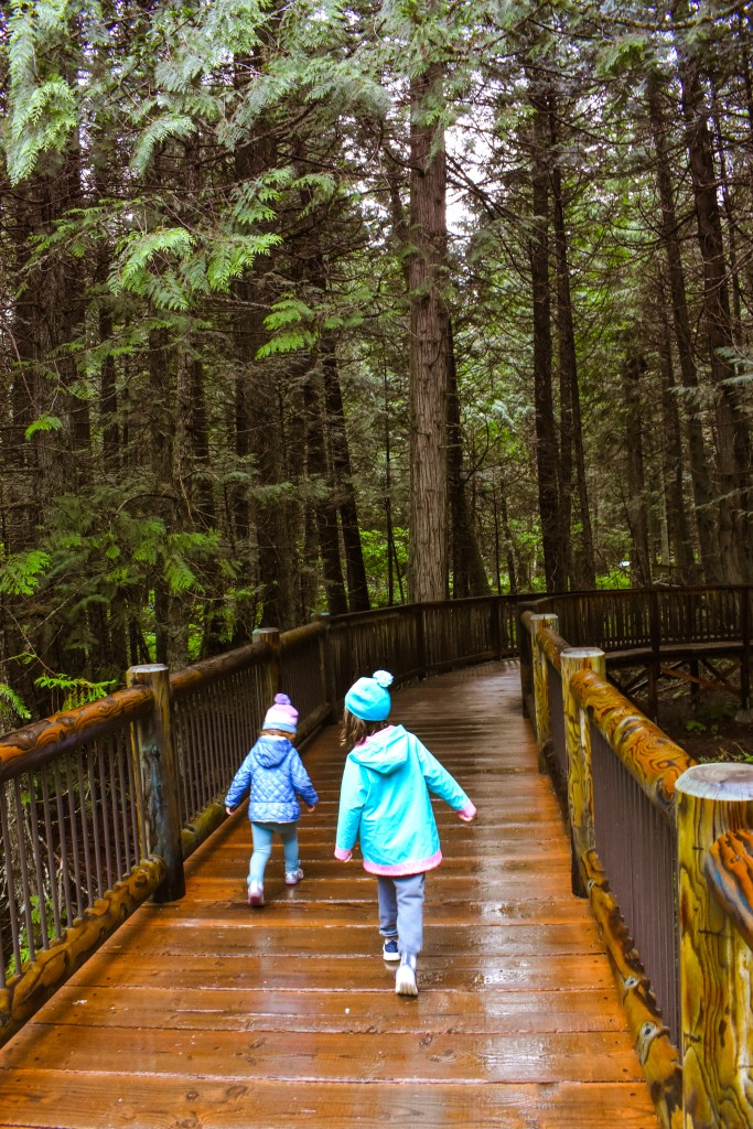 Toddler and older child hiking the Trail of the Cedars in Glacier National Park.