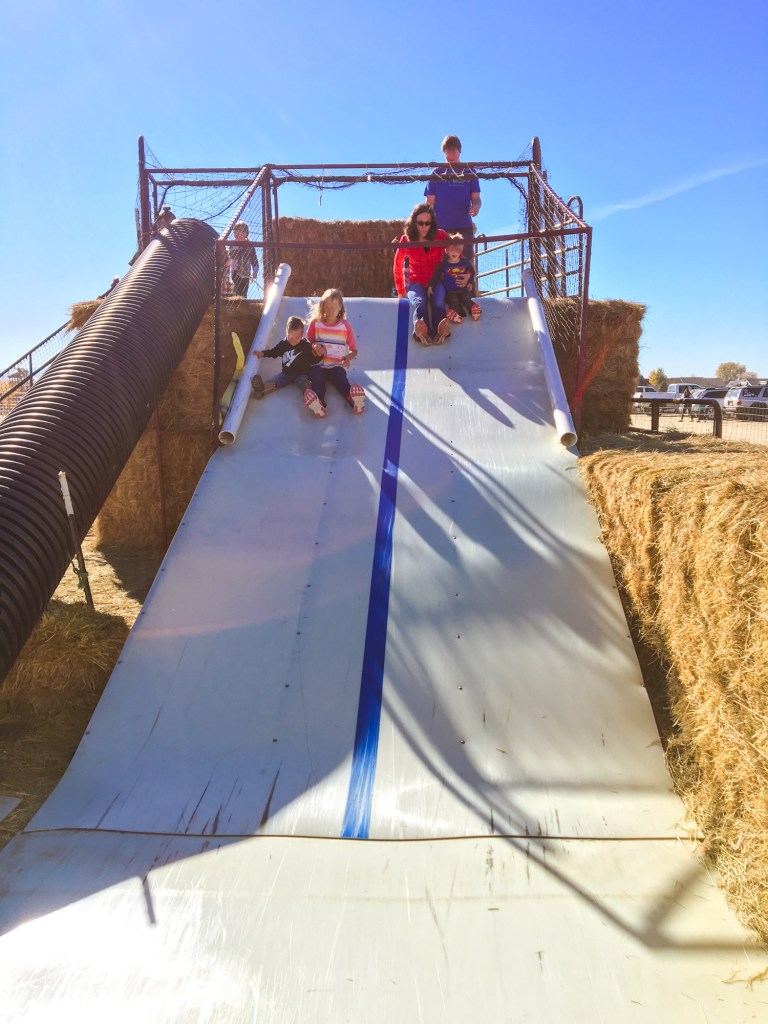 Fun riding down a hay slide in Montana at a fall festival.