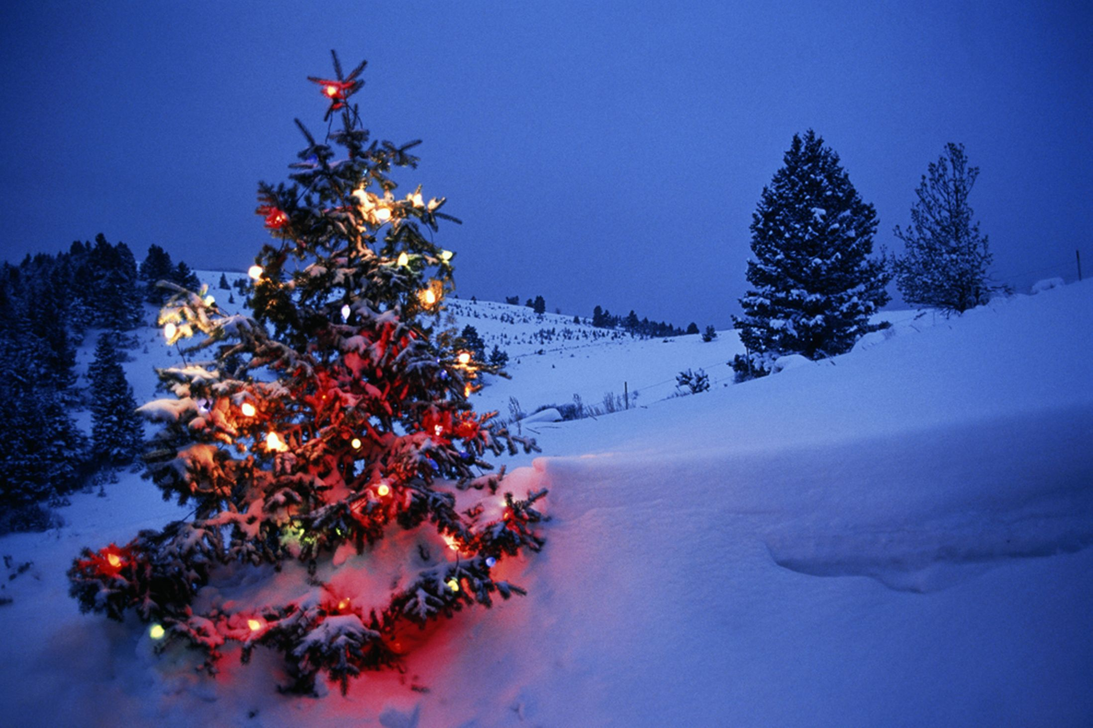 Snowfall On Christmas Day Travel News