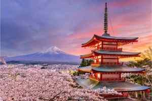 Coronavirus Cases In Japan Hit Record