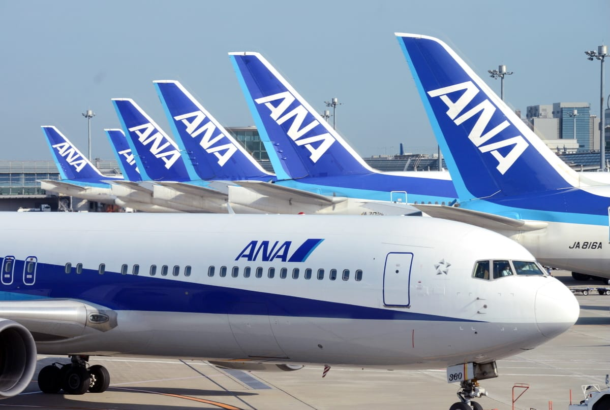 ANA Suspends Many Flights