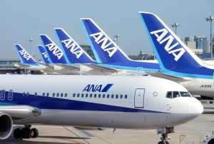 ANA Suspends Many Flights