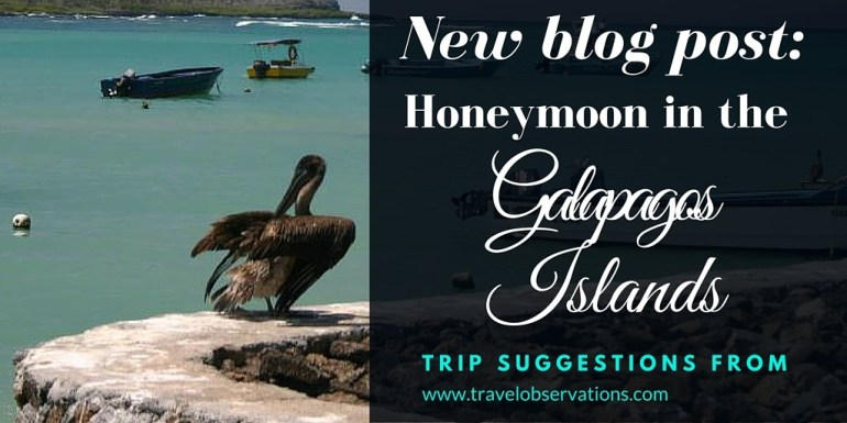 Trip suggestions from