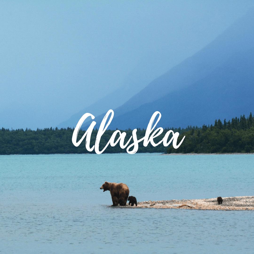 Alaska button