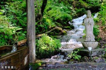 茶屋旁的溪水乃來自沸壺之池,分屬「平成之名水百選」,咪以為只係普通山澗。