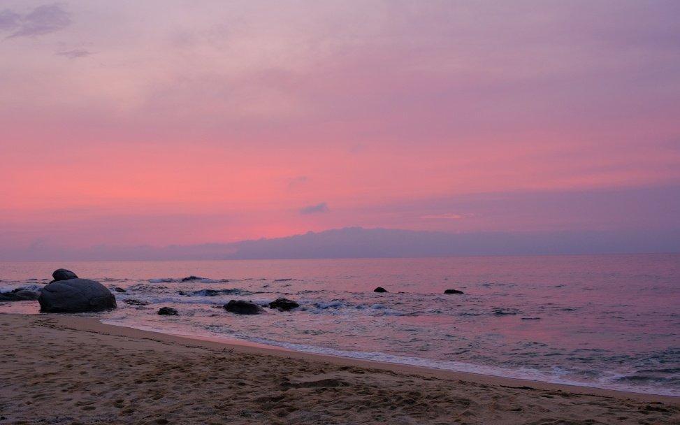在漂亮的晚霞中,小龜向大海進發。