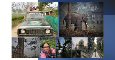 A Visit to Gorumara National Park, Eastern India