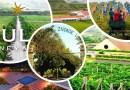 6 Spectacular Vineyards in India