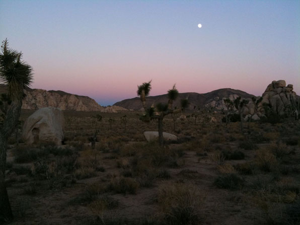 Joshua Tree National Park - Twilight