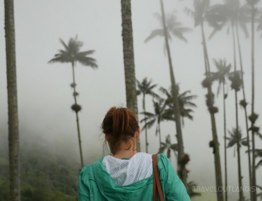 Valle de Cocora Hike - Taylor in the Palms