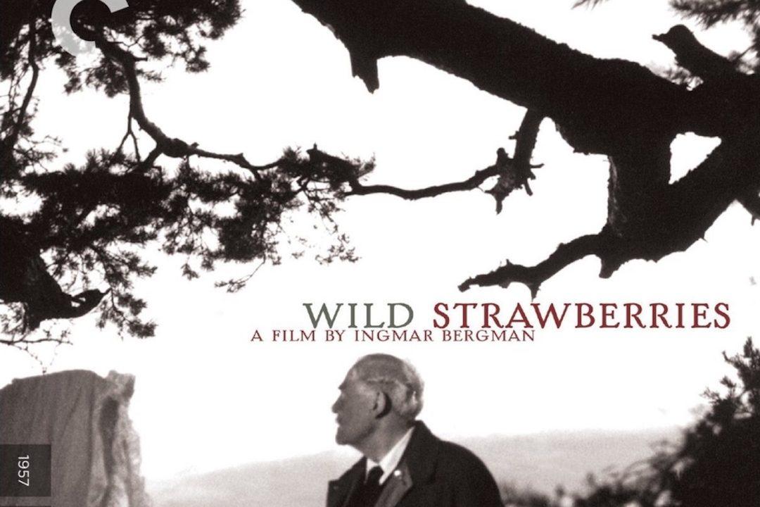 Wild Strawberries Movie Poster