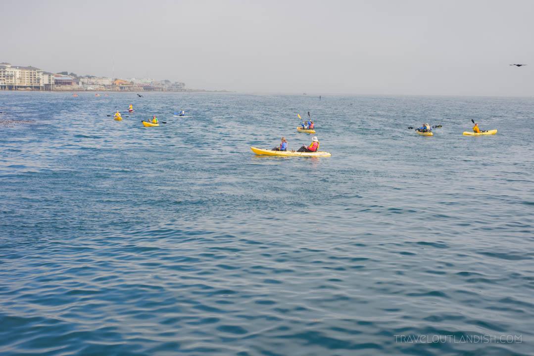 Things to do in Monterey - Kayak Rental
