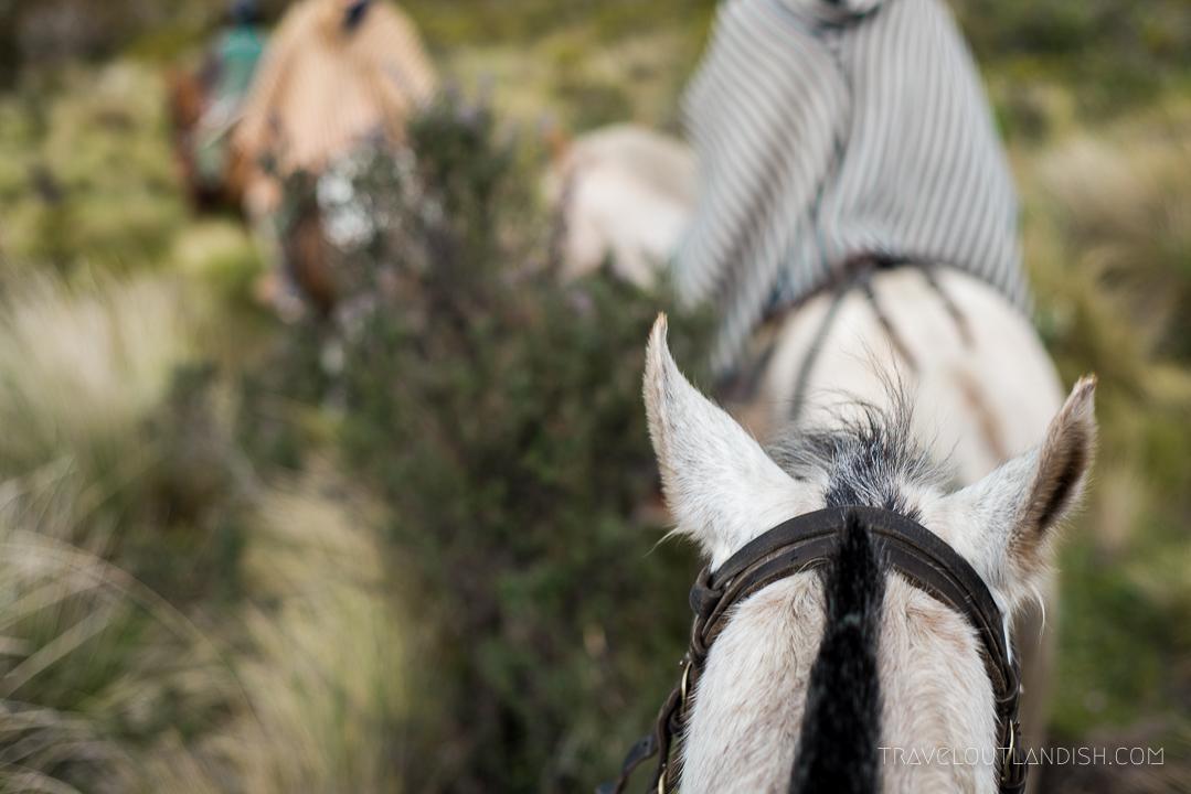 Horseback Riding in Cotopaxi, Ecuador