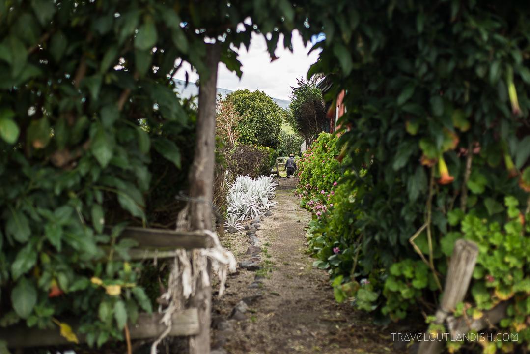 The Garden at Hacienda el Porvenir