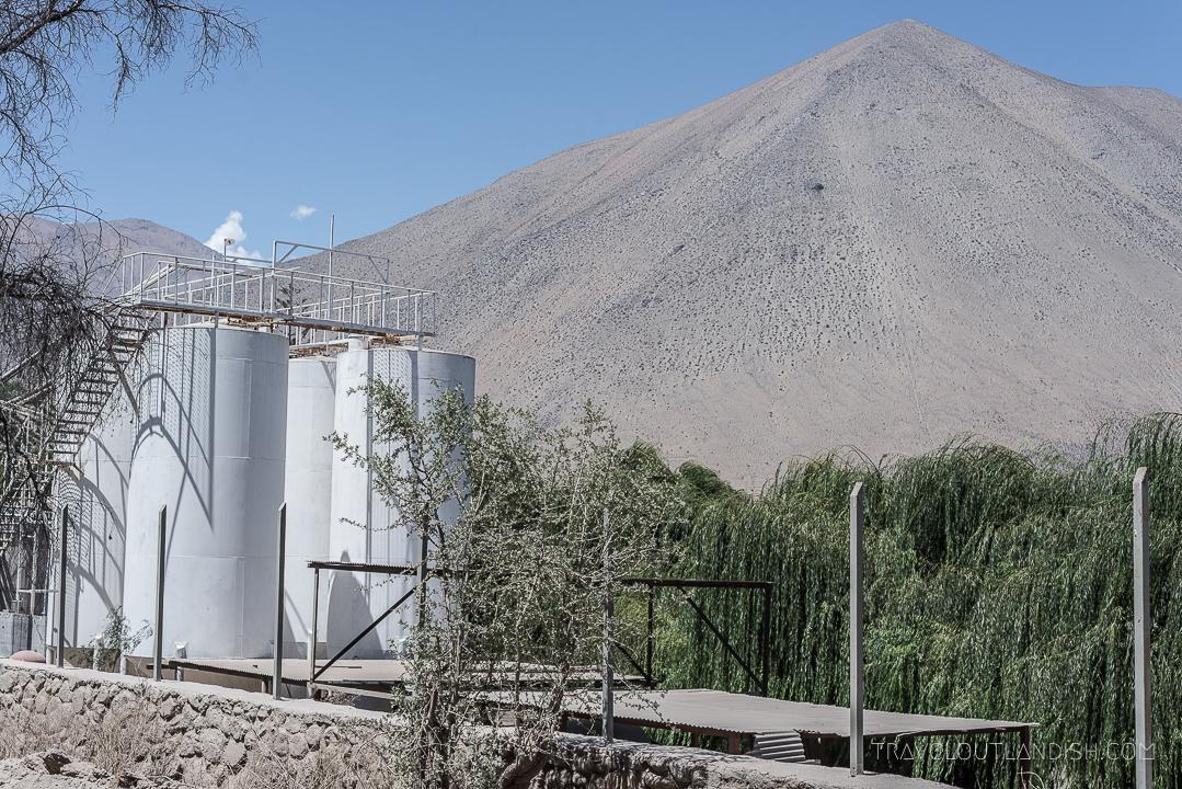 Valle del Elqui - ABA Pisqueria