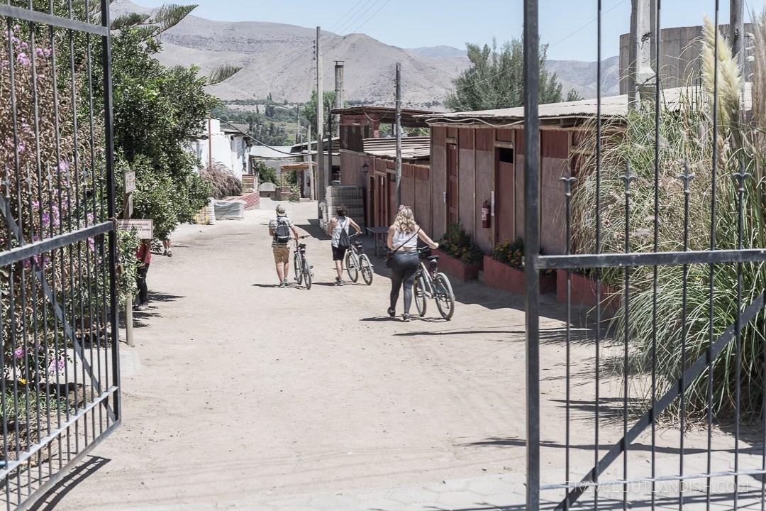 Valle del Elqui - Bike Rental in Valle del Elqui